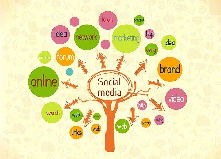 captivating the web social media